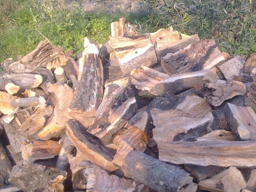 Είδη ξύλων Τζακιού που πρέπει να καίμε Ελιά