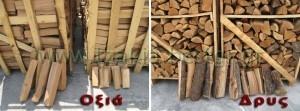 Είδη ξύλων Τζακιού που πρέπει να καίμε Δρύς & Οξιά